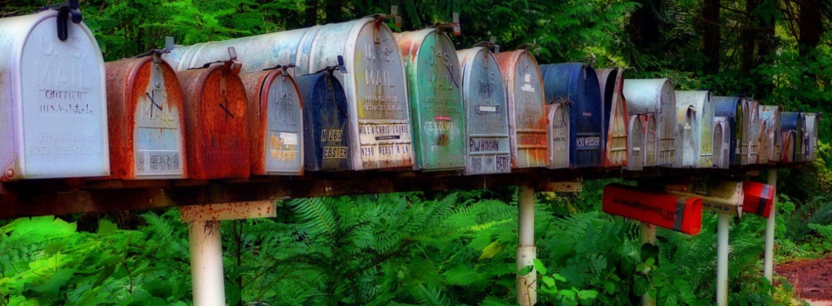 A row of colourful mailboxes with green foliage behind