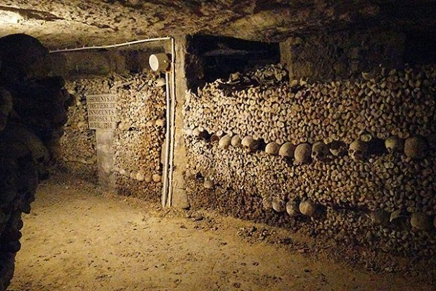 Wall of Bones - Paris Catacombs